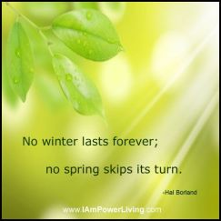 no winter lasts